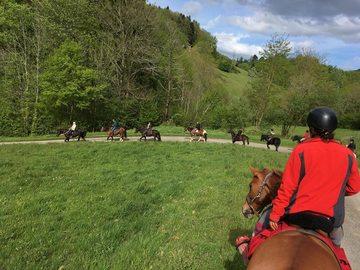 L'école d'équitation Equizones